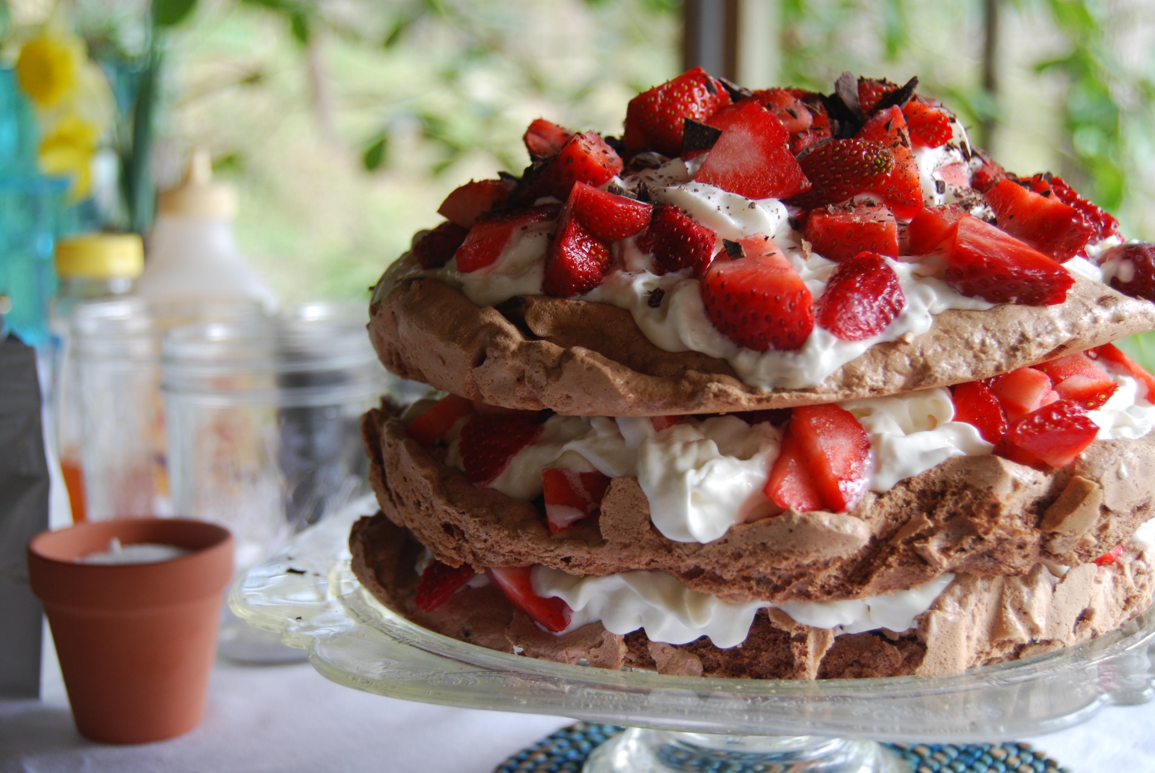 Chocolate Strawberry Pavlova | The Budget Bon Vivant